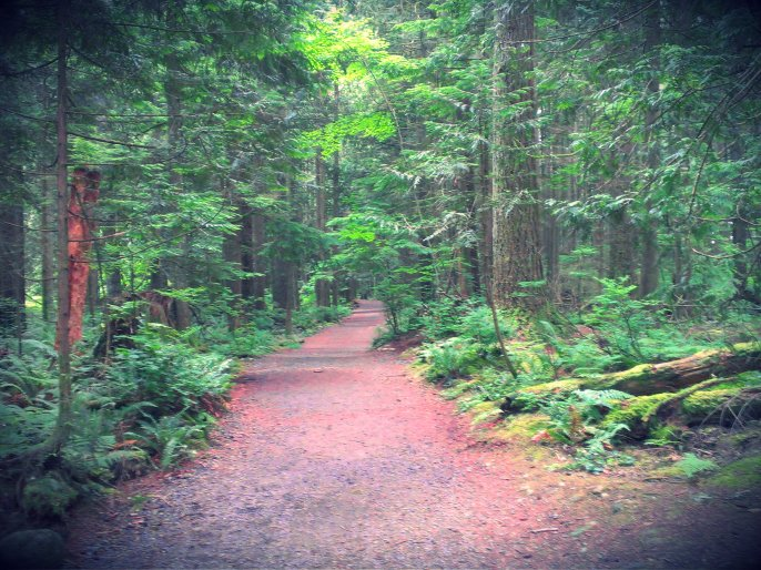 part 3 - trail