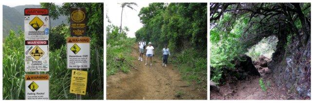 part 5 trail
