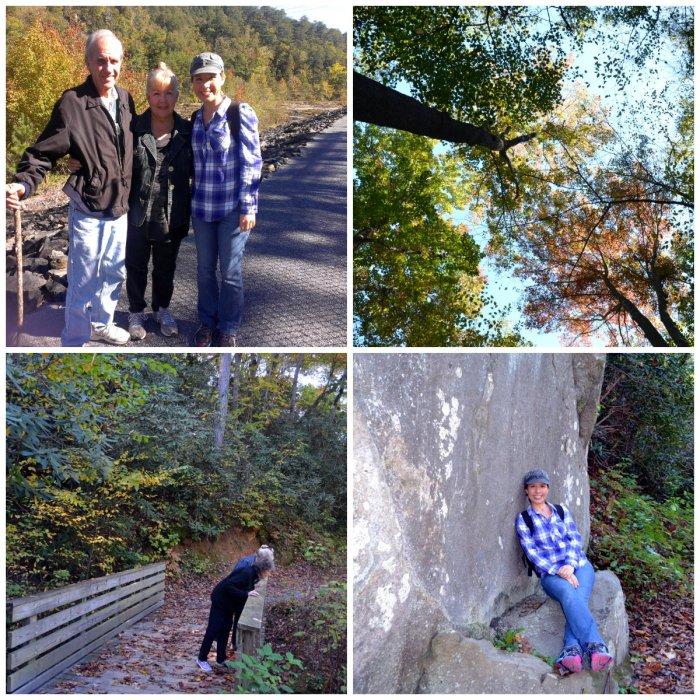 Rododendrun Trail